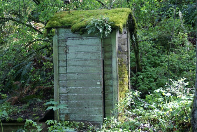 outhouse-231551_1920